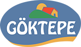 GOKTEPE-logo11
